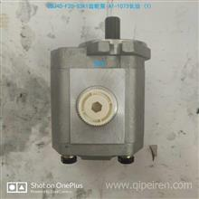 CBJ40-F20-S3K1長治齒輪泵/ A1-1073