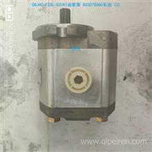 CBJ40-F25L-S31K1長治齒輪泵 803078360/ 803078360