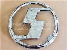 陕汽德龙X3000大S标 DZ14251950001 /DZ14251950001