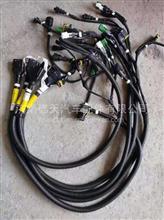 陕汽德龙 纯正配件 尿素箱模块线束(WP/2.2泵/45L)/DZ97189774066