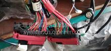 EQ153电控电喷卡车欧3车身驾驶室线束和底盘线束总成3724010-B9500