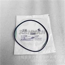 现货优势供应东风康明斯6CT 6L发动机缸套阻水圈O型密封圈/C3907177