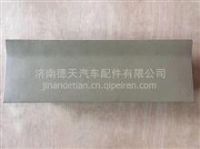 陕汽德龙X3000侧护板杂物盒盖总成   DZ14251610110/DZ14251610110