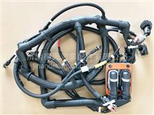 陕汽德龙X6000 发动机本体线束  DZ9X259775273/DZ9X259775273