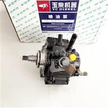 D5H00-1111100-011玉柴燃油泵/D5H00-1111100-011