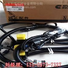 湖北江淮客车发电机4974301襄阳发电机厂家/康明斯